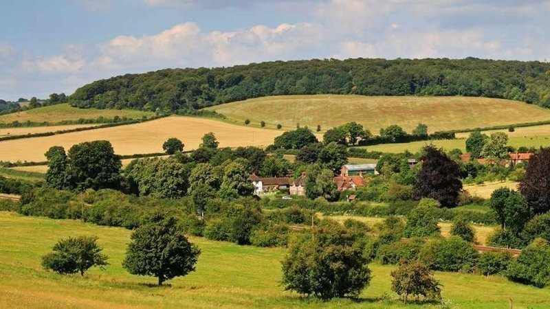 Countryside - Climate Emergancy Petition